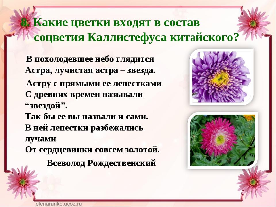 8. Какие цветки входят в состав соцветия Каллистефуса китайского? В похолоде...