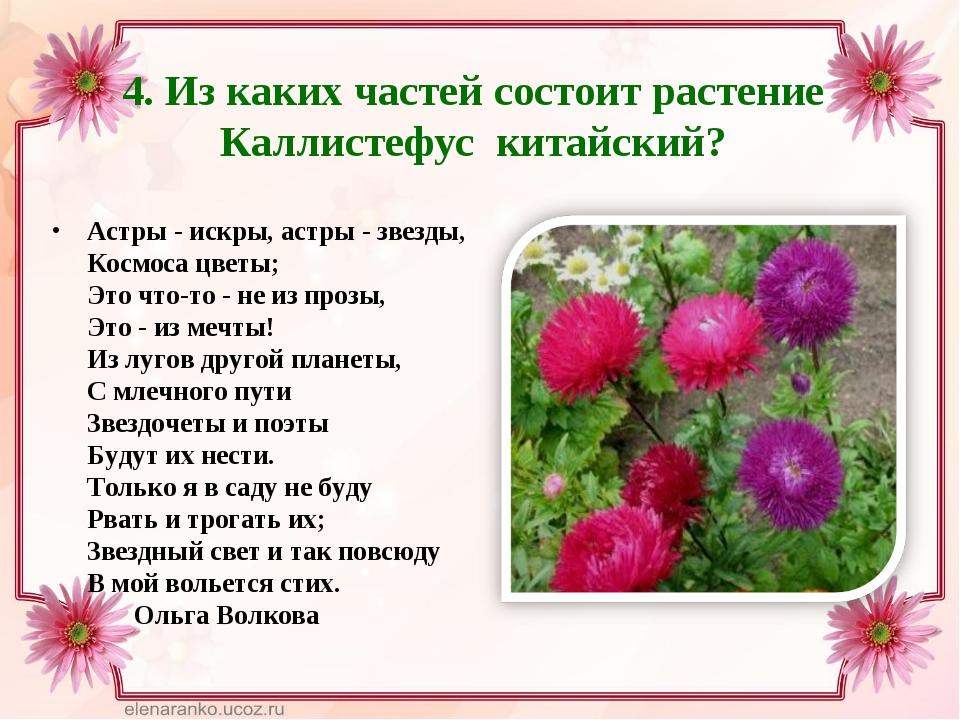 4. Из каких частей состоит растение Каллистефус китайский? Астры - искры, аст...