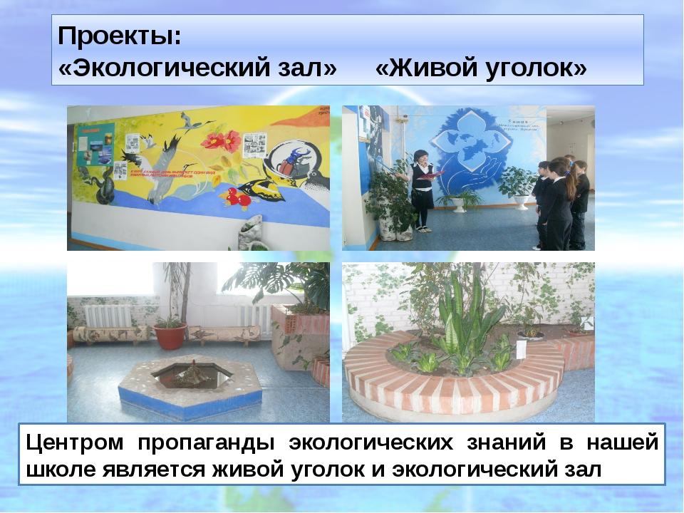 Проекты: «Экологический зал» «Живой уголок» Центром пропаганды экологических...
