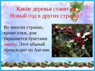 Какие деревья ставят на Новый год в других странах? Во многих странах, кроме