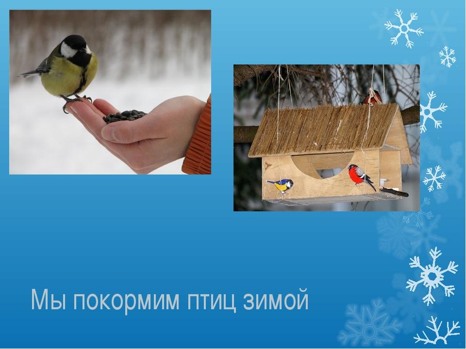 Мы покормим птиц зимой