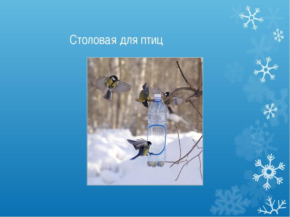 Столовая для птиц