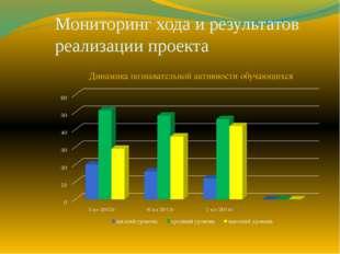 Мониторинг хода и результатов реализации проекта