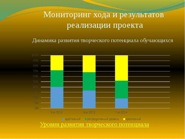 Мониторинг хода и результатов реализации проекта Динамика развития творческог...