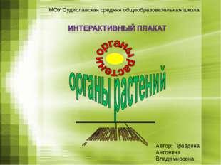 МОУ Судиславская средняя общеобразовательная школа Автор: Правдина Антонина В