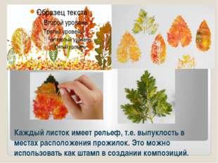 Каждый листок имеет рельеф, т.е. выпуклость в местах расположения прожилок. Э