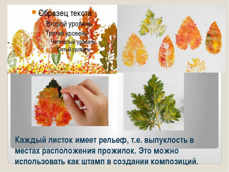 Каждый листок имеет рельеф, т.е. выпуклость в местах расположения прожилок. Э...