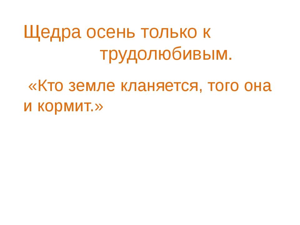 Щедра осень только к трудолюбивым. «Кто земле кланяется, того она и кормит.»