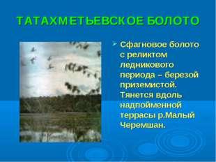 ТАТАХМЕТЬЕВСКОЕ БОЛОТО Сфагновое болото с реликтом ледникового периода – бере