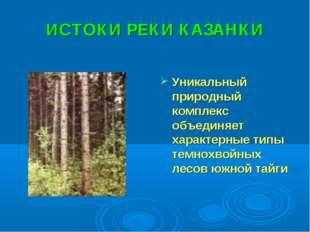 ИСТОКИ РЕКИ КАЗАНКИ Уникальный природный комплекс объединяет характерные типы