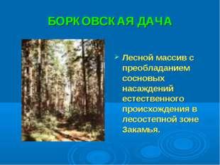БОРКОВСКАЯ ДАЧА Лесной массив с преобладанием сосновых насаждений естественно