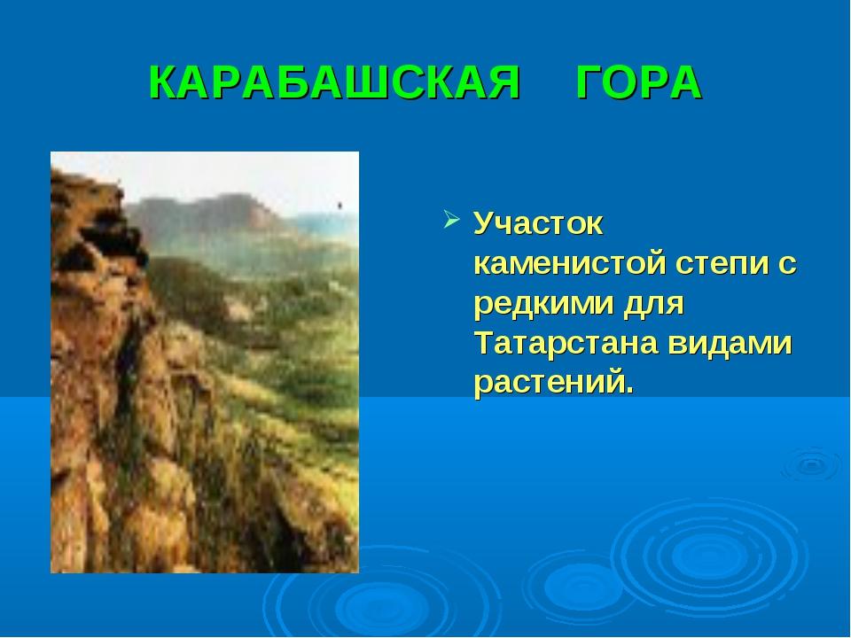 КАРАБАШСКАЯ ГОРА Участок каменистой степи с редкими для Татарстана видами рас...