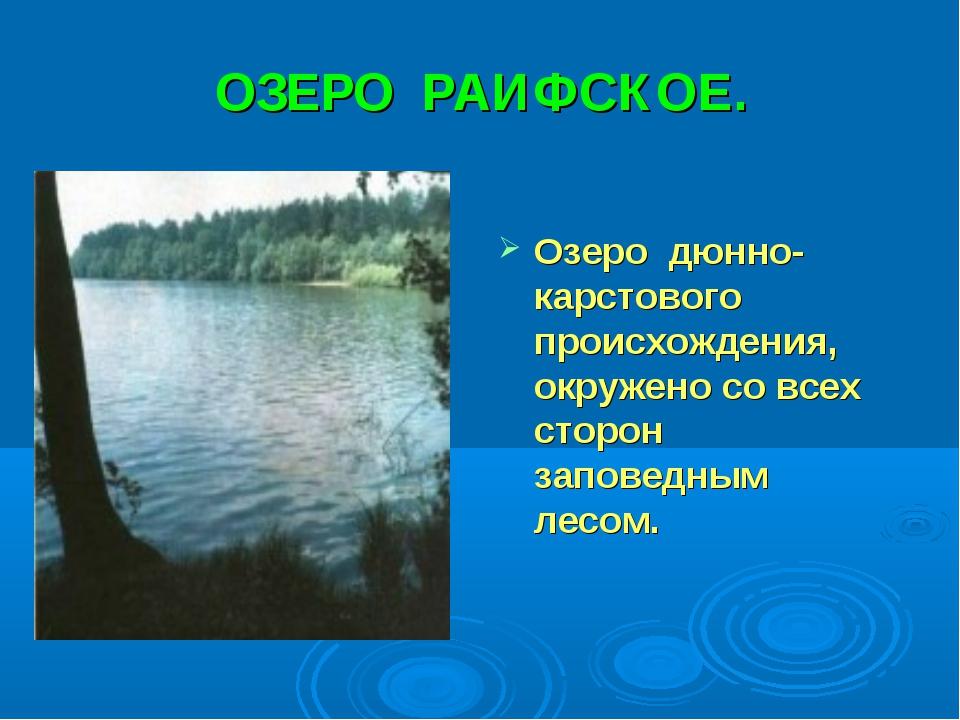 ОЗЕРО РАИФСКОЕ. Озеро дюнно-карстового происхождения, окружено со всех сторон...