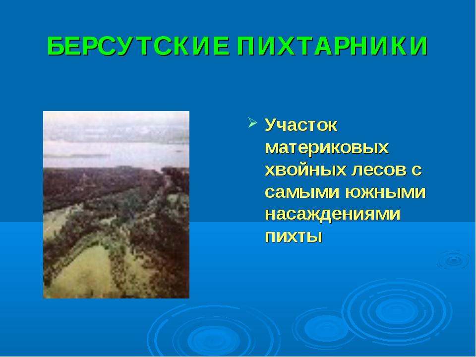 БЕРСУТСКИЕ ПИХТАРНИКИ Участок материковых хвойных лесов с самыми южными насаж...