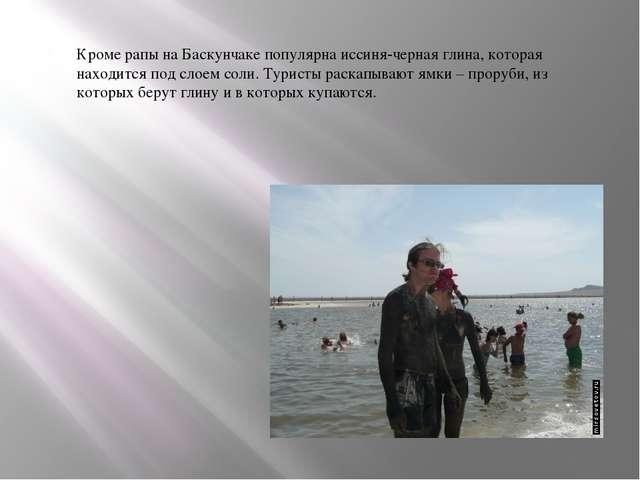 Кроме рапы на Баскунчаке популярна иссиня-черная глина, которая находится по...