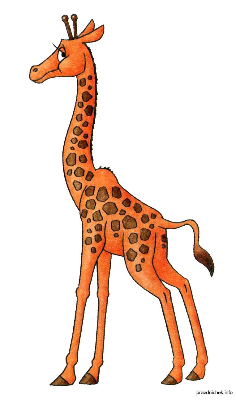 Картинки жираф рисунок