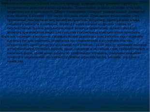 . Содержание деятельности Филолог всесторонне изуч