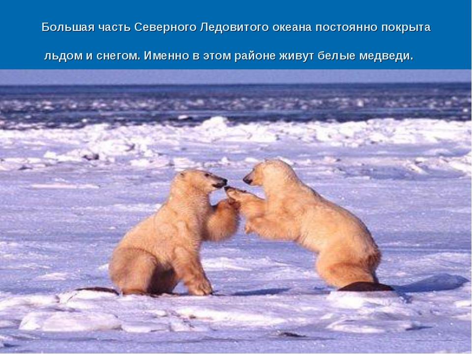 Большая часть Северного Ледовитого океана постоянно покрыта льдом и снегом. И...