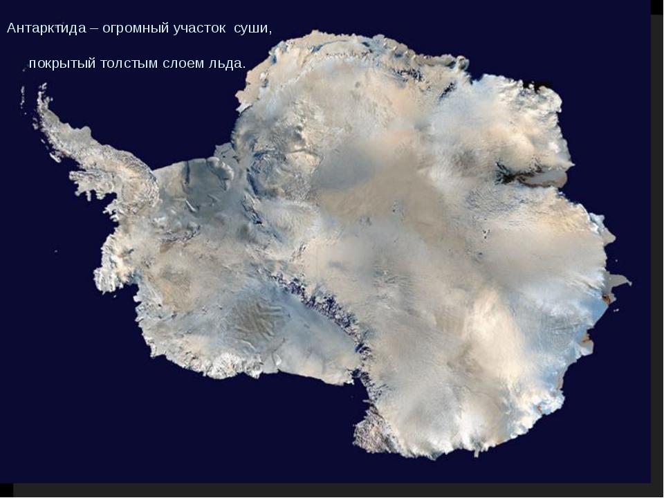 Антарктида – огромный участок суши, покрытый толстым слоем льда.