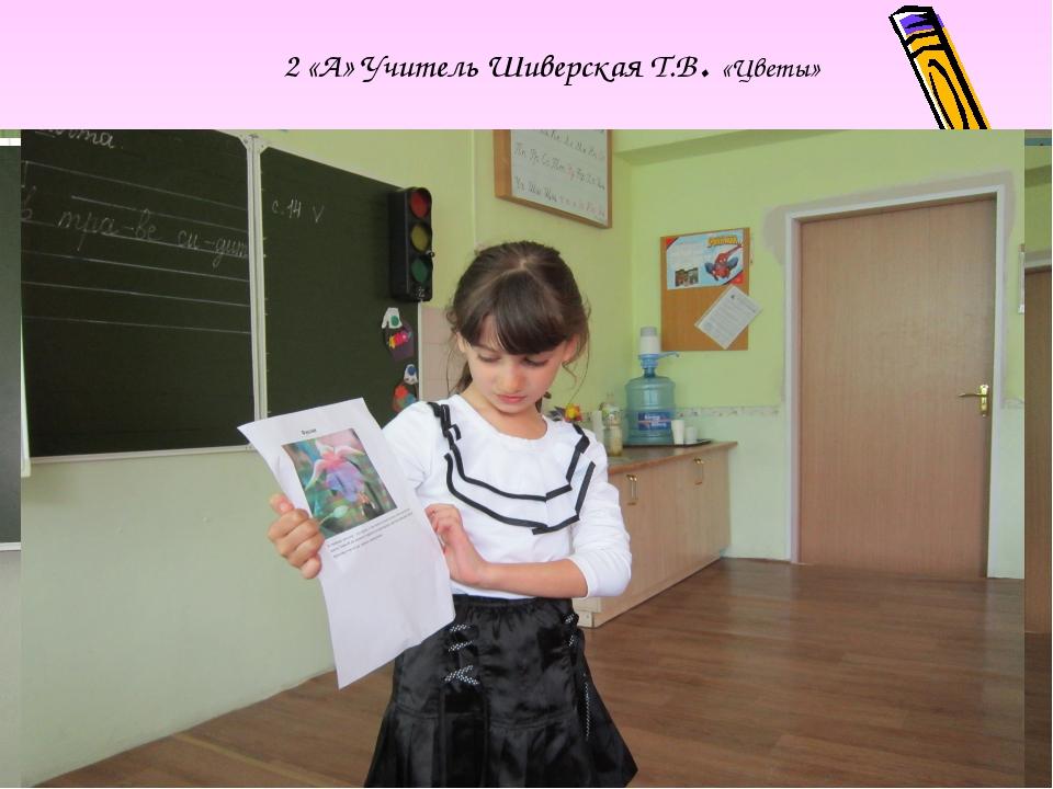 2 «А» Учитель Шиверская Т.В. «Цветы»