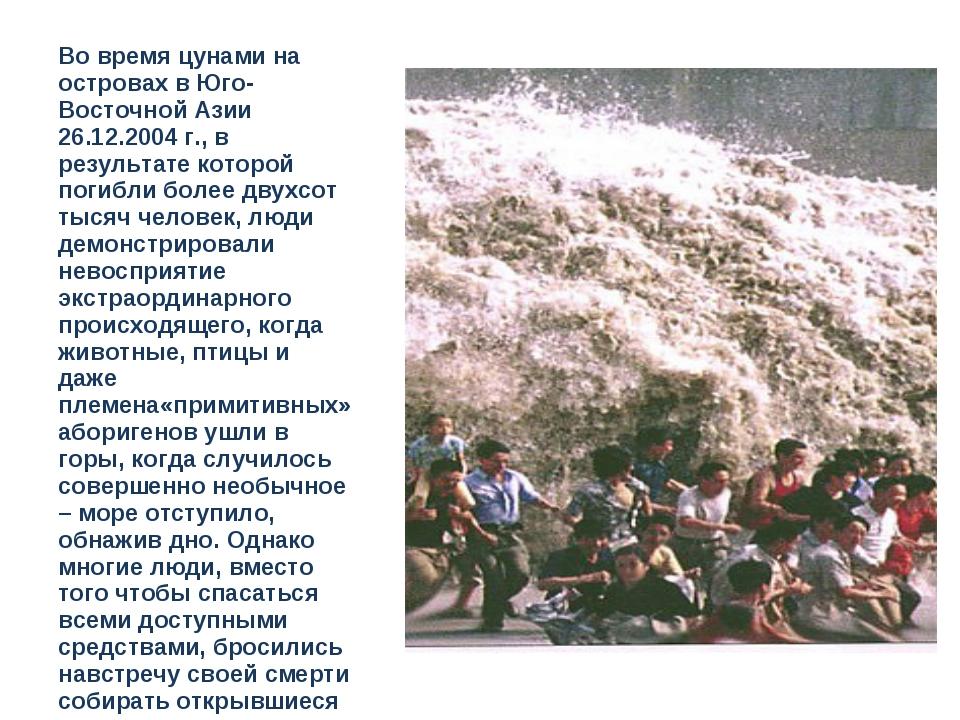 Во время цунами на островах в Юго-Восточной Азии 26.12.2004 г., в результате...
