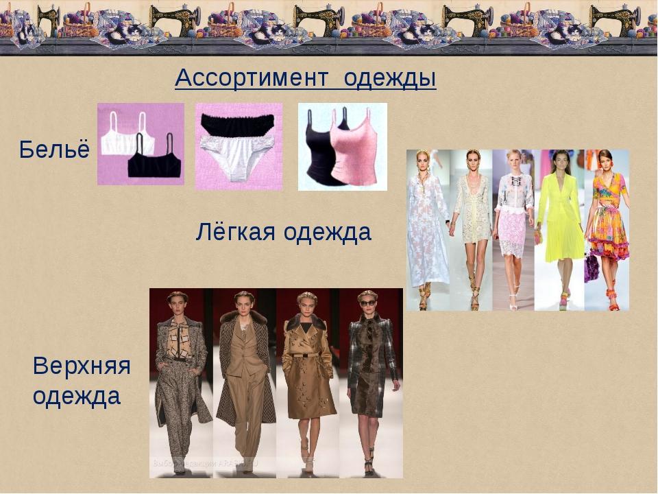 Ассортимент одежды Бельё Лёгкая одежда Верхняя одежда
