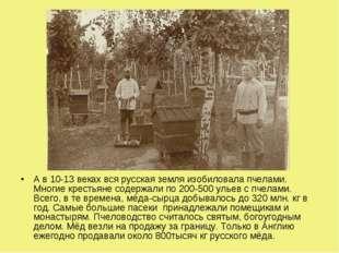 А в 10-13 веках вся русская земля изобиловала пчелами. Многие крестьяне содер