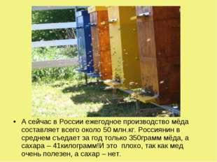 А сейчас в России ежегодное производство мёда составляет всего около 50 млн.к