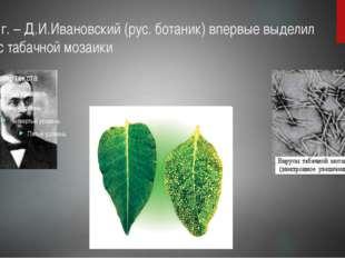 1852 г. – Д.И.Ивановский (рус. ботаник) впервые выделил вирус табачной мозаики