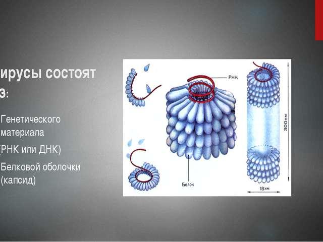 Вирусы состоят из: Генетического материала (РНК или ДНК) Белковой оболочки (к...
