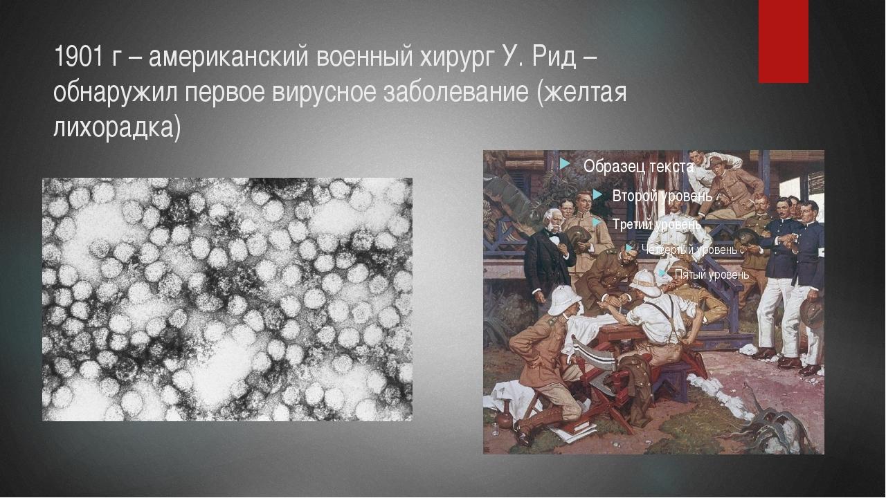 1901 г – американский военный хирург У. Рид – обнаружил первое вирусное забол...