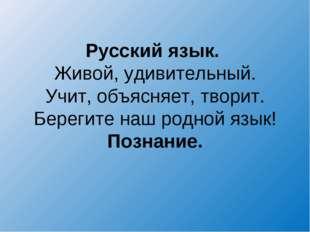 Русский язык. Живой, удивительный. Учит, объясняет, творит. Берегите наш родн