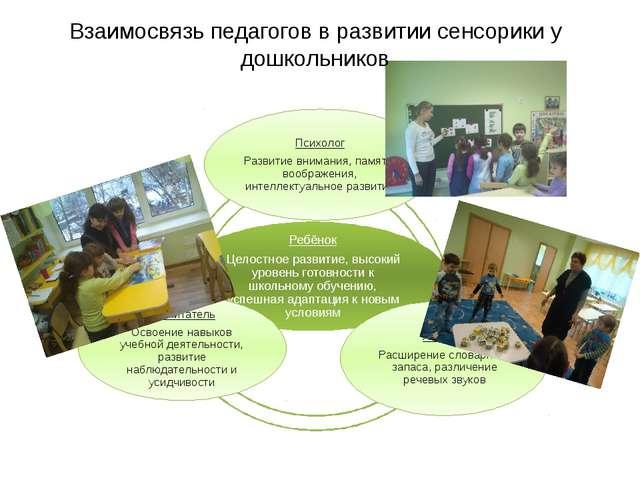 Взаимосвязь педагогов в развитии сенсорики у дошкольников