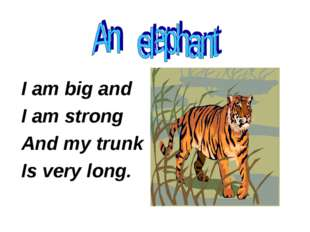 I am big and I am strong And my trunk Is very long.