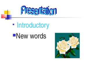 Introductory New words