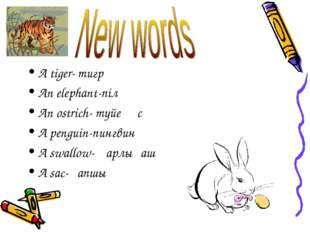 A tiger- тигр An elephant-піл An ostrich- түйеқұс A penguin-пингвин A swallow