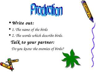 Write out: 1. The name of the birds 2. The words which describe birds. Talk t