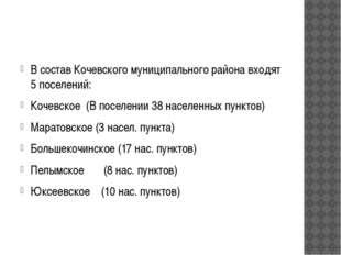 В состав Кочевского муниципального района входят 5 поселений: Кочевское (В п