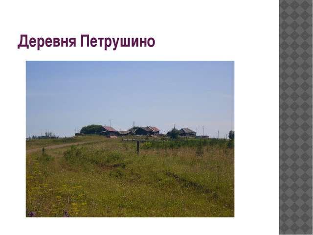 Деревня Петрушино