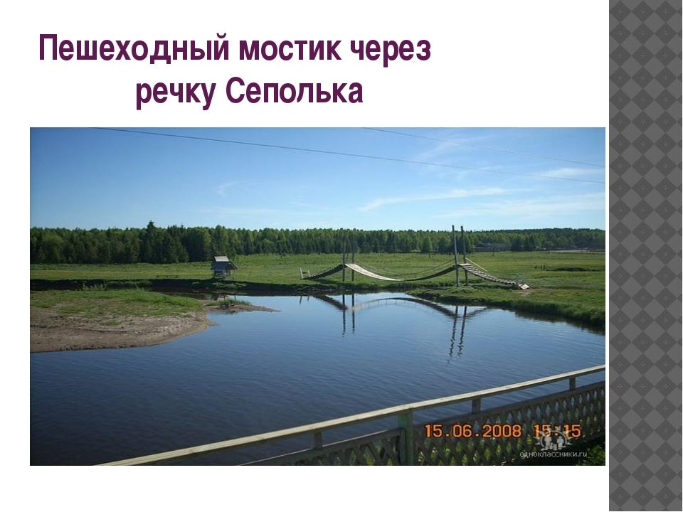 Пешеходный мостик через речку Сеполька