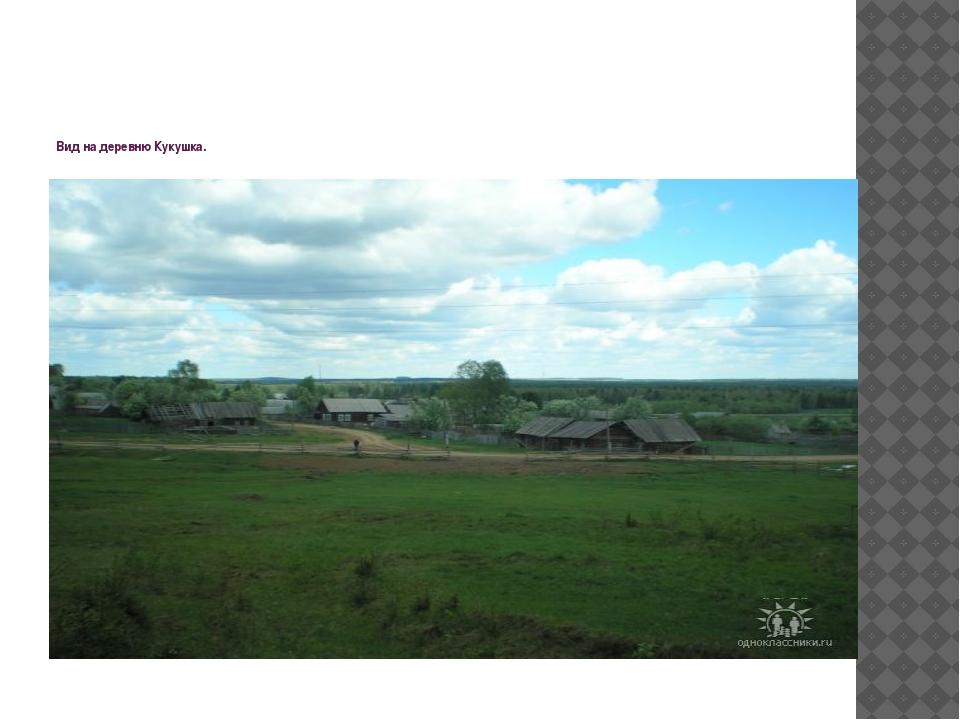 Вид на деревню Кукушка.