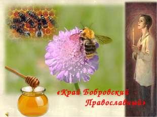 Издавна славилась Бобровская земля крепкими православными традициями «Край Бо