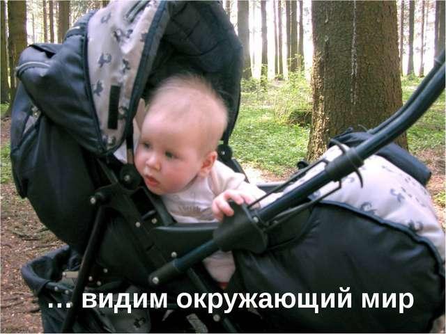 … видим окружающий мир … Изображение с сайта http://ph.files.7ja.ru/