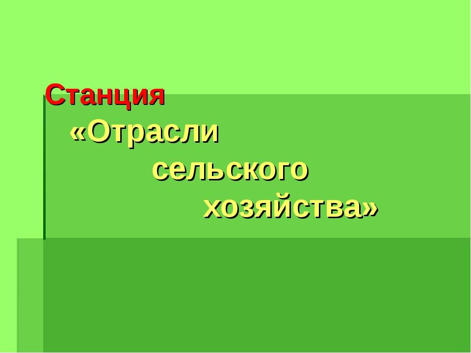 Станция «Отрасли сельского хозяйства»