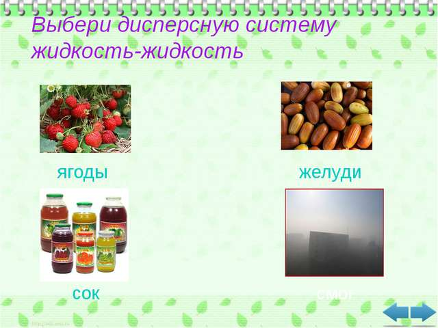 Выбери дисперсную систему жидкость-жидкость ягоды желуди сок смог