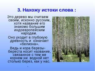 Это дерево мы считаем своим, исконно русским, хотя название его знакомо больш