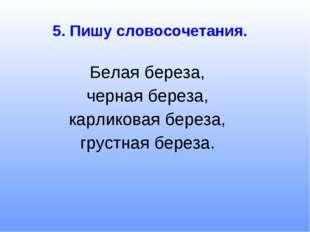 5. Пишу словосочетания. Белая береза, черная береза, карликовая береза, груст