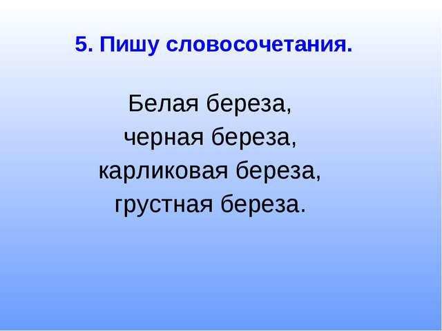 5. Пишу словосочетания. Белая береза, черная береза, карликовая береза, груст...