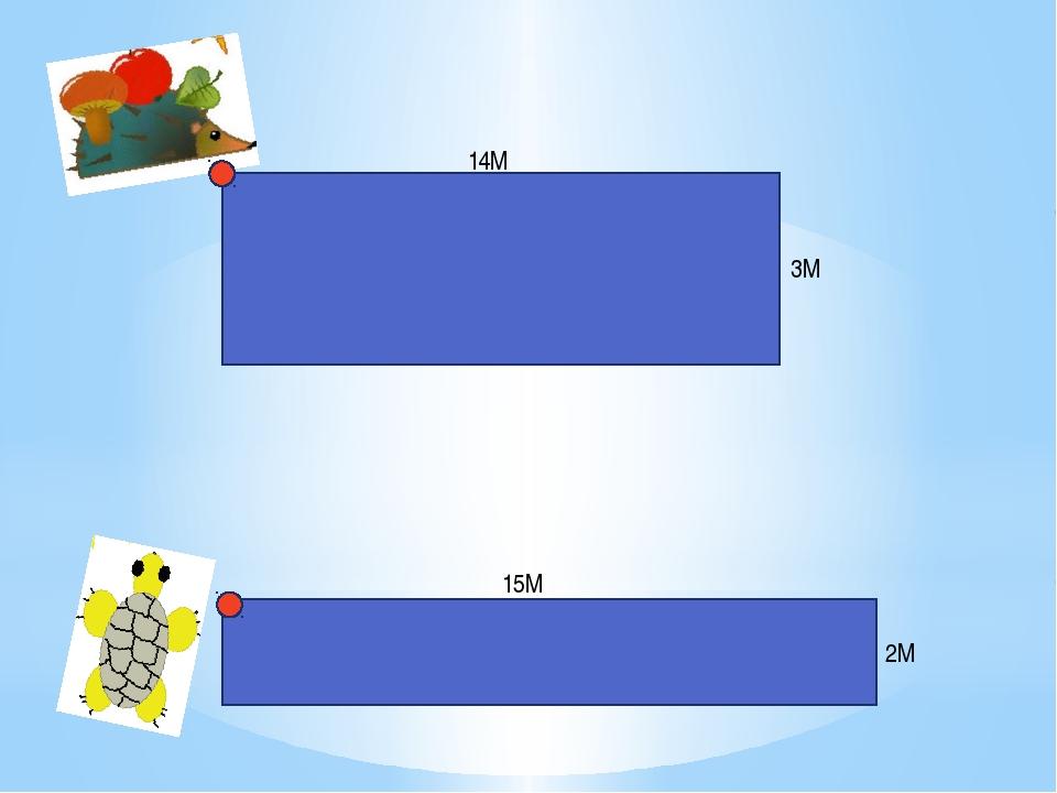 14М 3М 15М 2М