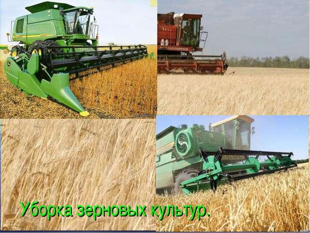 Уборка зерновых культур.